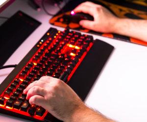 Wie werde ich professionelle/r Gamer/-in?